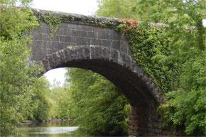 Shannon Boat Hire Gallery - Mossy bridge