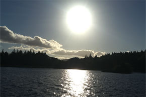 Shannon Boat Hire Gallery - Cruising Lough Key