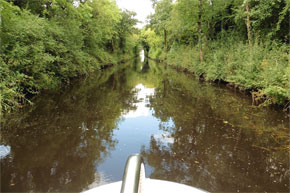 Cruising the Lough Allen Canal