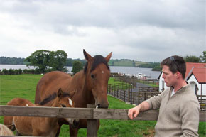 Shannon Boat Hire Gallery - Horse whispering at Swan Island on the Shannon/Erne Waterway.