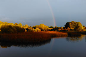 Shannon Boat Hire Gallery - Somewhere, over this rainbow...
