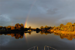 Shannon Boat Hire Gallery - I'm sure there's a crock of gold around here somewhere.