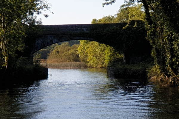 Shannon Boat Hire Gallery - Bridge on the Jamestown Canal