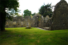 The ruins of a Dominican Priory in Portumna Forest Park