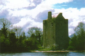 Cloongogough Castle on Lough Derg